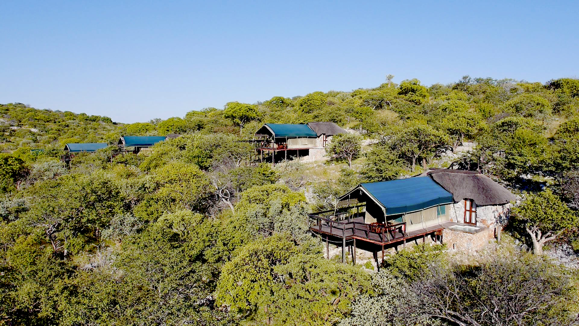 Etosha Park Etosha Lodges Namibia